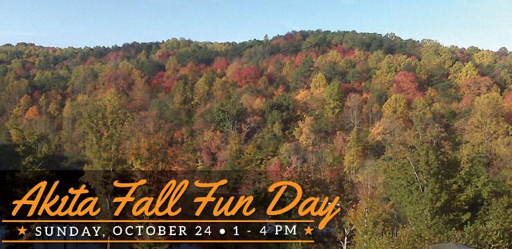 Akita Fall Fun Day